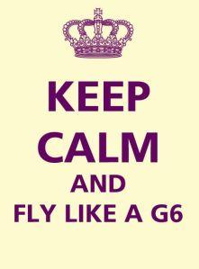 fly like a G6