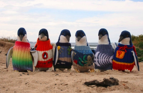 penguins-in-sweaters!