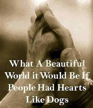 If people had hearts like dogs
